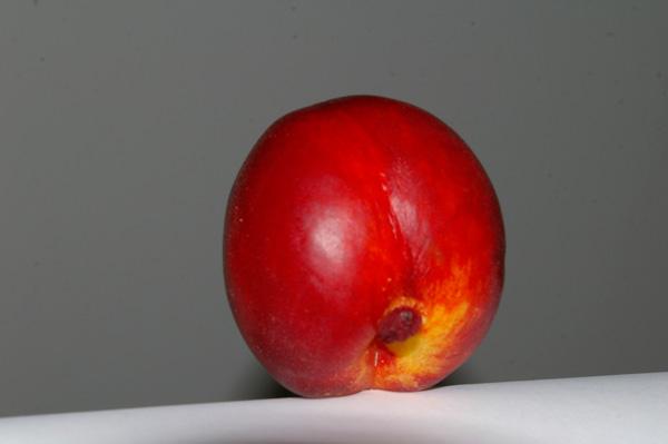 nektarinen-mann_6