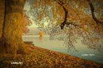 lindau_toscpark_001_kufo_8