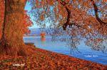 lindau_toscpark_001_lakf_8
