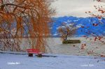 lindau_toscpark_004_nakf_8