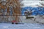 lindau_toscpark_004_sust_8